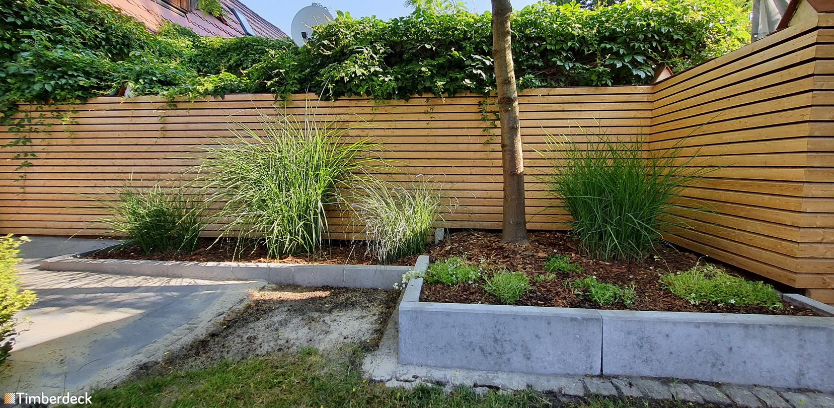 ogrodzenie z modrzewia